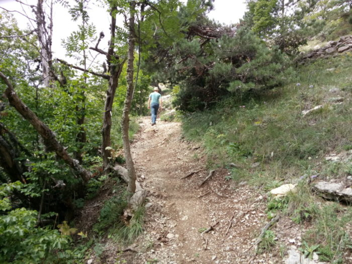 Пешком на Ай-Петри: тропа Ягодка