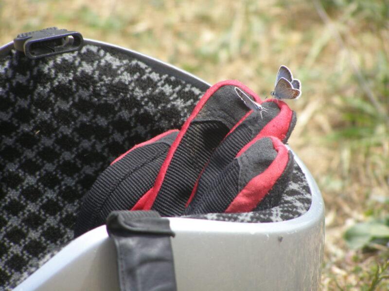 Экипировка парапланериста: шлем и перчатки