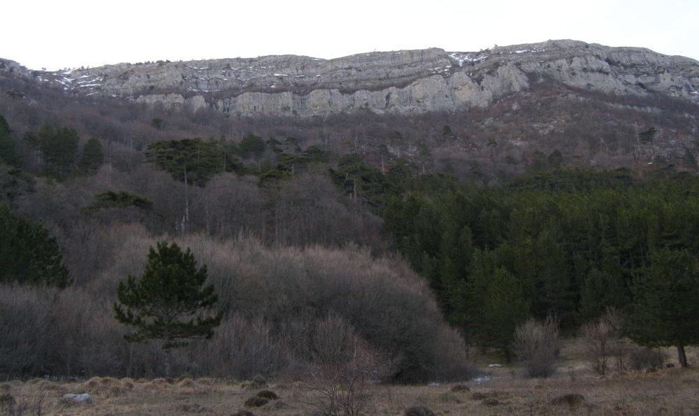 Скальный пояс